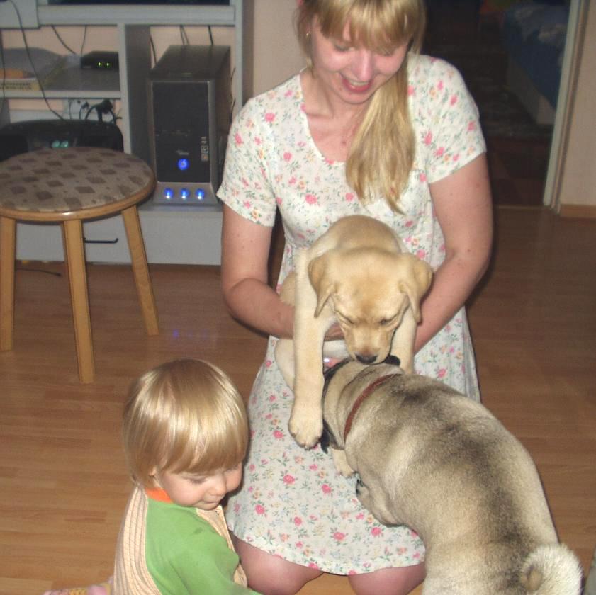 Macek, Kristýnka, Kubík a štěně
